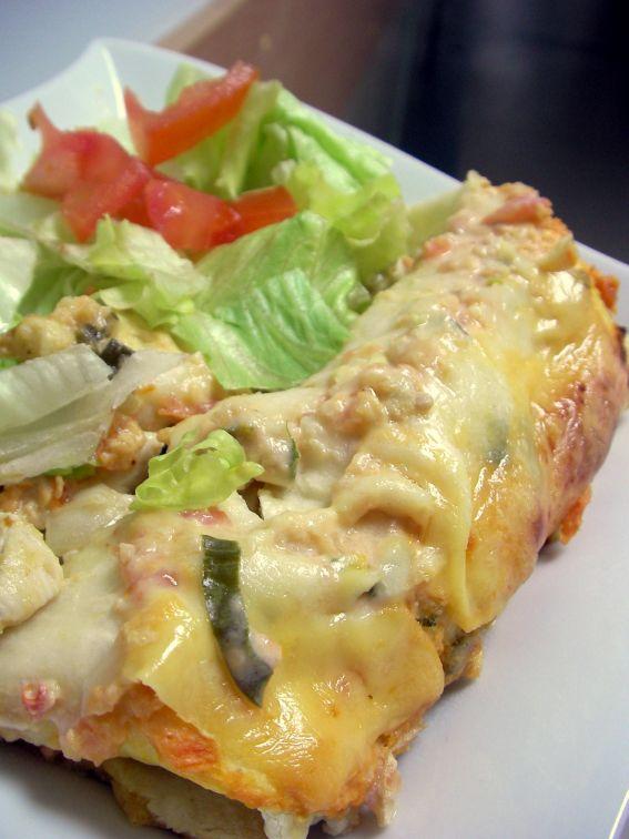 Change Your Way of Thinking: Chicken Sour Cream Enchiladas
