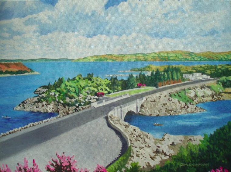 Pontoon Bridge, Mayo --  Sold