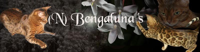 (N) Bengaluna's