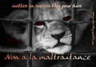 Non à la maltraitance des animaux