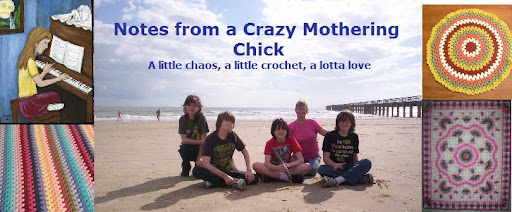 Notes from a Crazy Mothering Chick