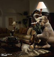 How to hide an elephant