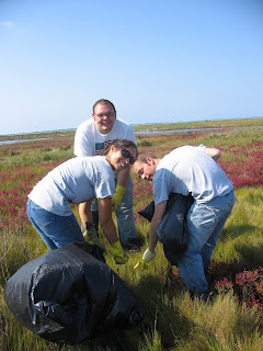 Marsh Clean-up