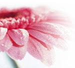 L'amore è come un fiore, splendido e delicato. Christine.