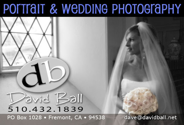 Portrait & Wedding Photography by David Ball