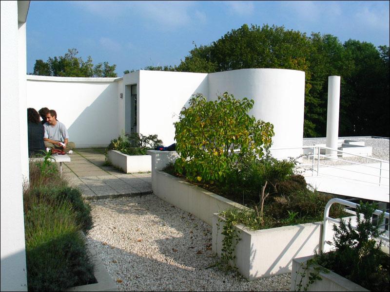 Y o u t h i n f l u e n c e michael sorkin - Le corbusier tetto giardino ...