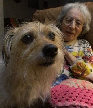 Cane che ascolta il verdetto del medico. Il malato è la padrona