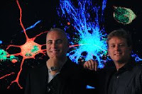 Frank LaFerla, Mathew Blurton-Jones and colleagues found that neural stem cells could be a potential treatment for advanced Alzheimer's disease. Credit: Daniel A. Anderson / University Communications.