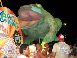 A Meia Noite,o Sapo Ganhou as Ruas de Manacapuru!