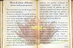 Blog Flores de Lótus