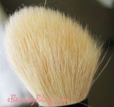 Essence of Beauty Blush Brush