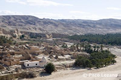 Mountain oasis of Tamerza