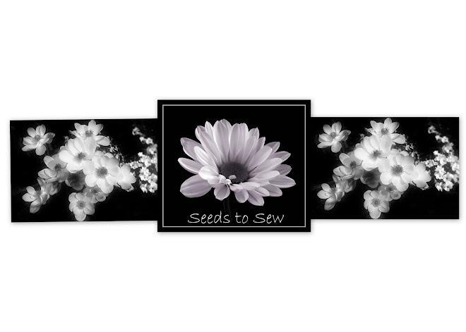 Seeds to Sew