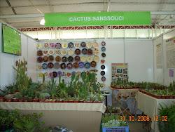 Expo Primavera del año 2008