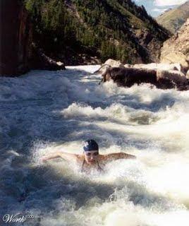 alex elder blog nadando contra corriente