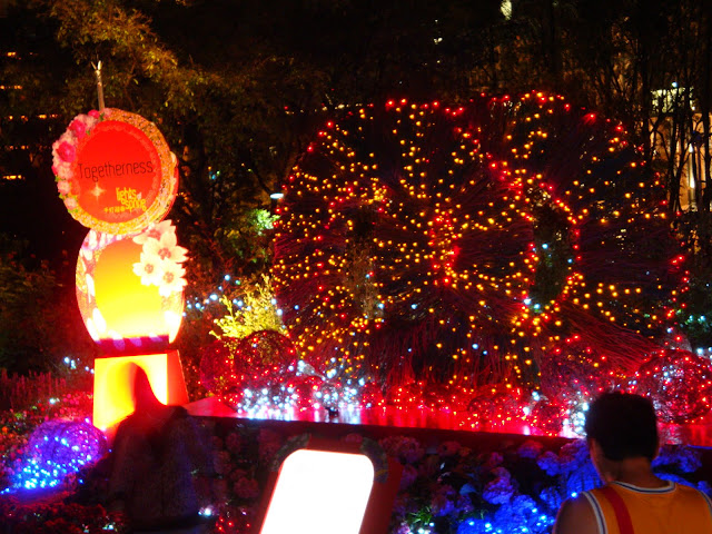 Lights of Spring Festival