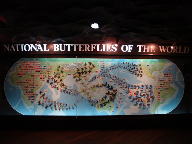 Sentosa Butterfly Park and Insect Kingdom