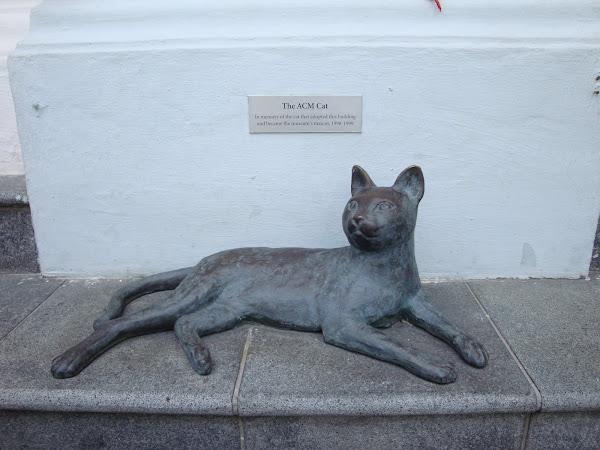 Peranakan Museum Cat