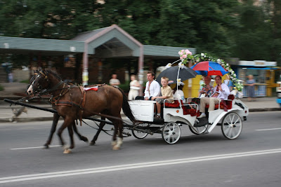 Carriage For Newlyweds Ukrainian American Wedding