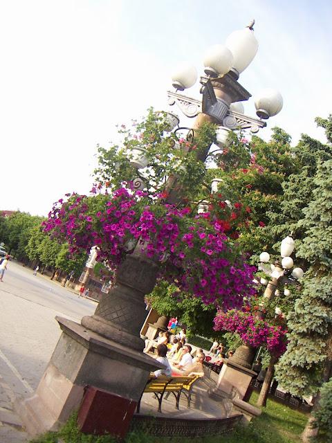 Flowerpots Ternopil