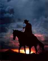 cowboy in paradise