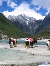 Ved Himalayas fot