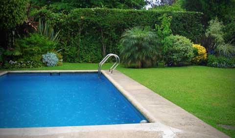 swimming pool backyard summer