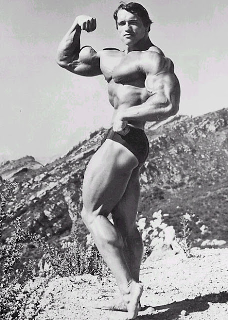 mighty physique of Arnold Schwarzenegger