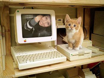Olha eu aqui... Você não me pega. Miau gatinho!!!
