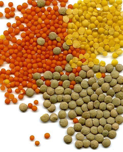 فوائد عن العدس Lentils