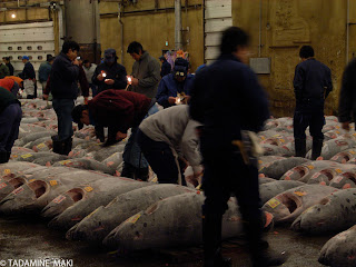 Tsukiji fish market, Tokyo