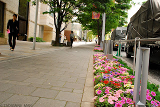 Flowers on the street, at Roppongi Hills, in Tokyo