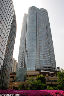 Buildings with blooms of azaleas, at Roppongi Hills, in Tokyo
