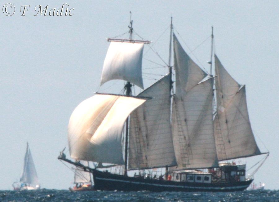 le bateau de Martin du 22 juillet trouvé par Martine IMG_7036%2527+copie