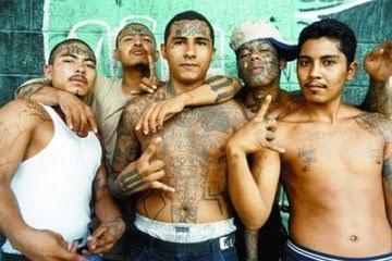 MEXICAN GANGS