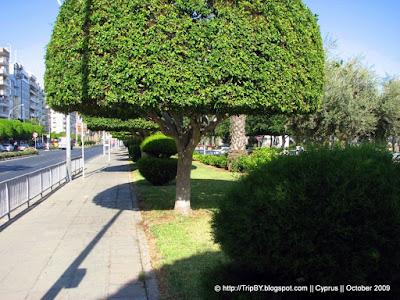 Лимассол Limassol by TripBY.info