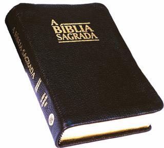 EVANGELHO SEGUNDO MARCOS, ESTUDO BIBLICO, TEOLOGICO, EVANGELICO