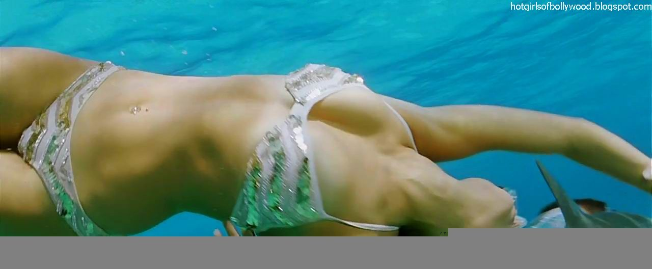 Lara Dutta Bikini Pictures From The Movie Blue Show That Is