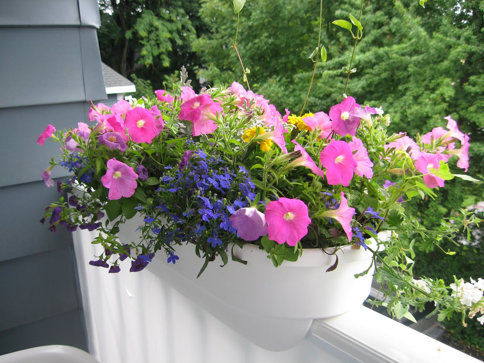 Organic Land Care Custom Flower Boxes and containers
