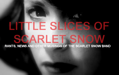 little slices of scarlet | snow