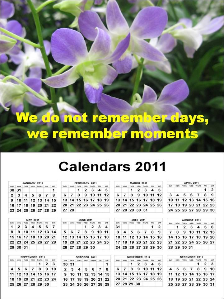 2011 a4 size large print calendar - large print - rnzfb.org.nz