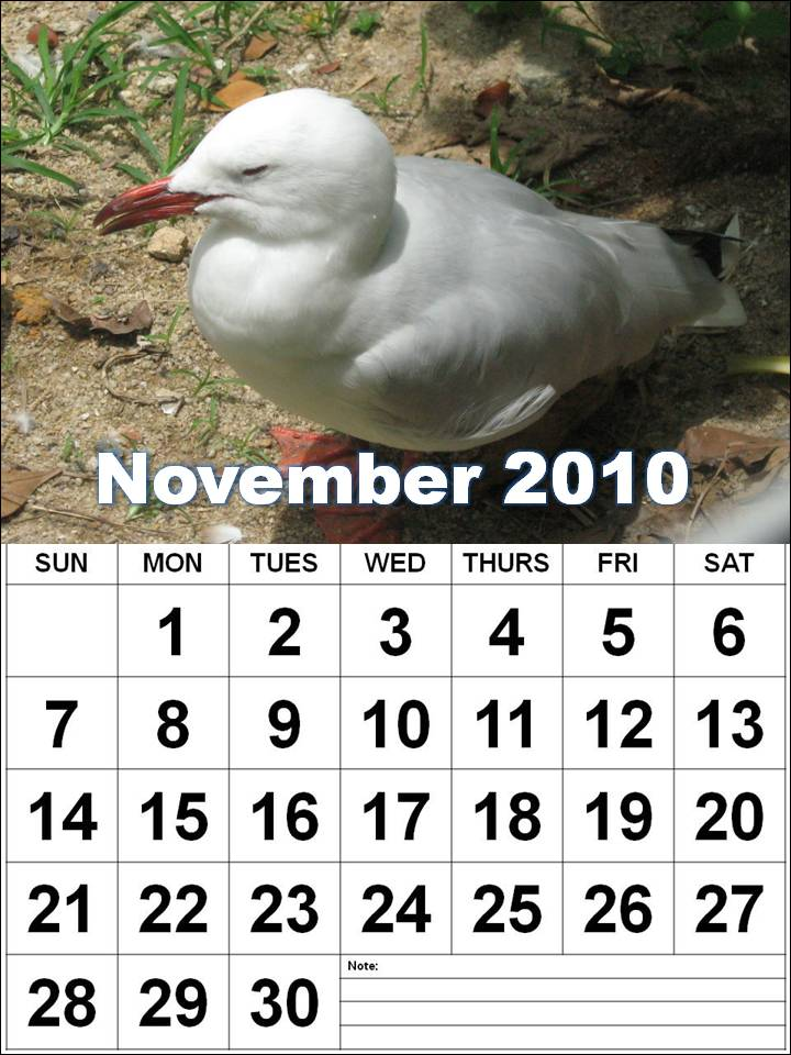 printable november 2010 calendar. Free Big Colorful Calendar 2010 November Printable Template. To download and print this Blank November 2010 Monthly Calendar:
