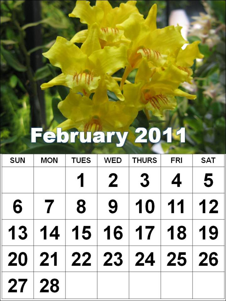 2011 calendar february and march. February 2011 Calendar with