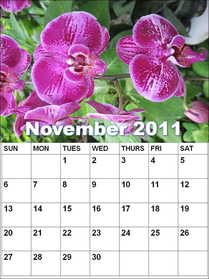monthly calendar 2011 template. Blank Calendar 2011 November