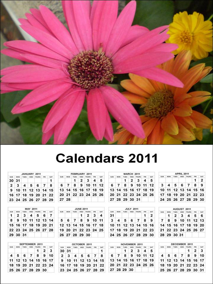 To download and print this January 2011 to December 2011 Printable Calendar: