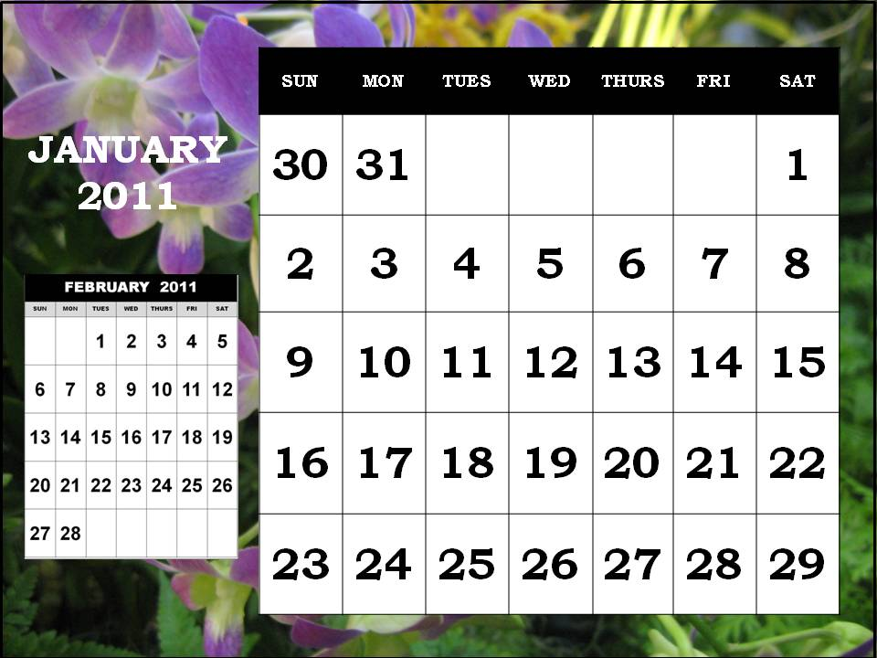 january calendar 2011 template. CALENDAR 2011 TEMPLATE JANUARY