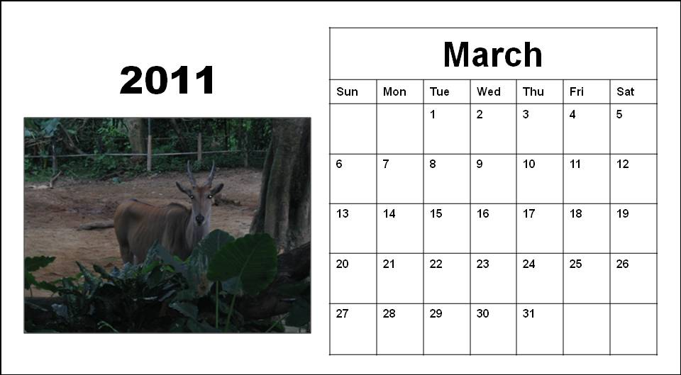 calendar of 2011. Blank Calendar 2011 March or