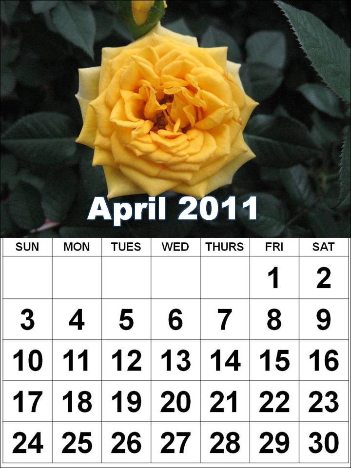 2011 calendar template with holidays. april 2011 calendar template.