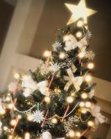 Vår vackra julgran (som den skulle vilja se ut)