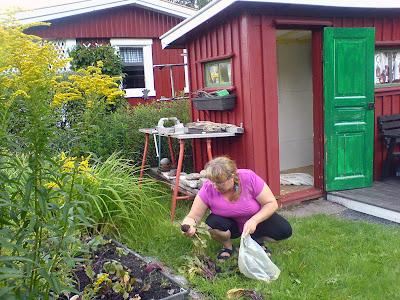 Ulrika, the gardener